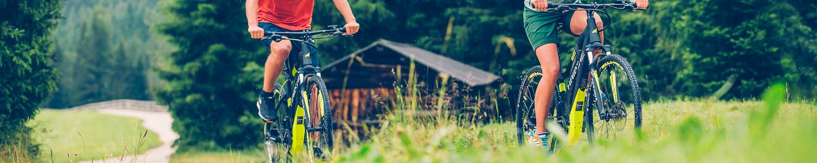 Haibike E-Bike Cross- und Fitnessräder