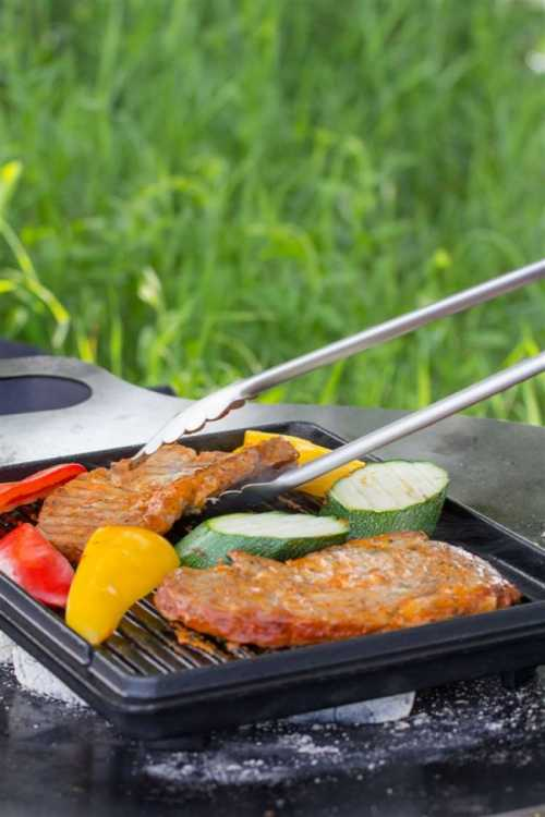 Petromax Grill- und Kohlenzange (klein)
