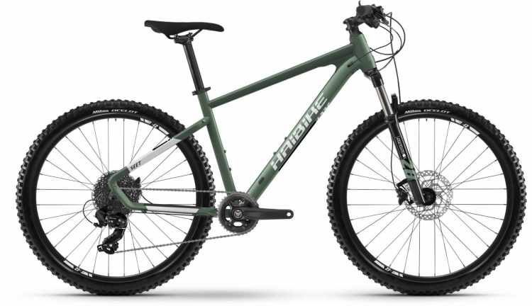 Haibike Seet 6 bamboo green/cool grey m. 2021 - Hardtail Mountainbike