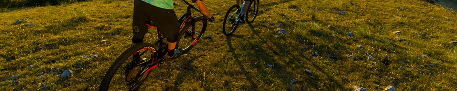 Scott Fahrräder