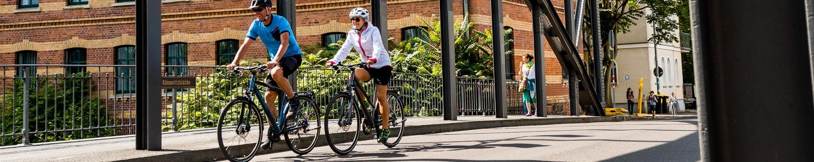 Trekkingräder und Citybikes