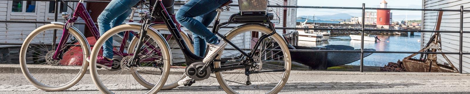 tiefeinsteiger e bike trekkingr der jetzt online kaufen. Black Bedroom Furniture Sets. Home Design Ideas